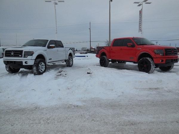 White FXR and Red FXR
