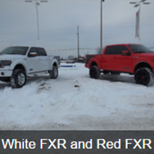 White FXR and Red FXR