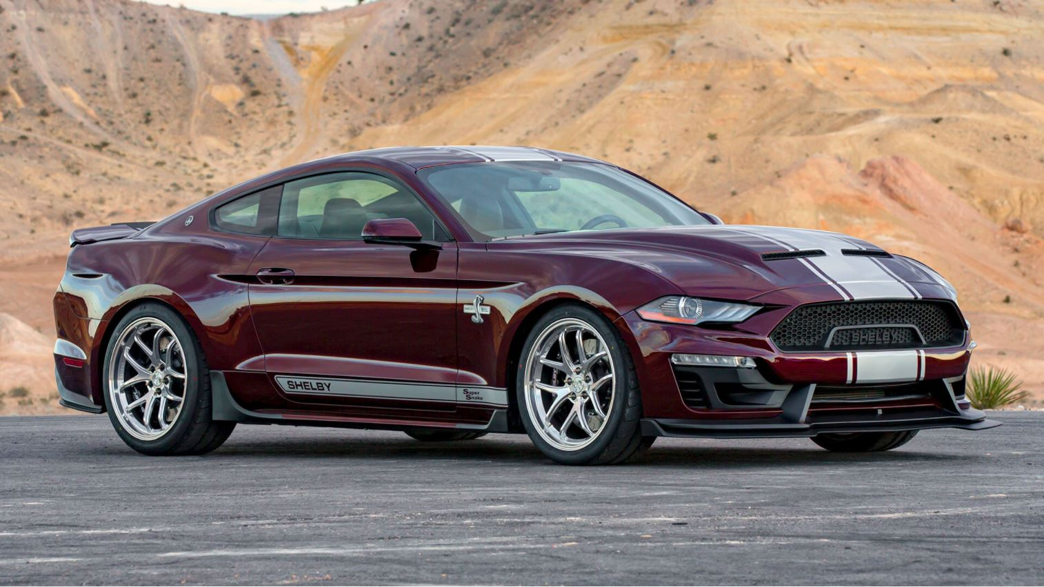 The Mustang Shelby Bold